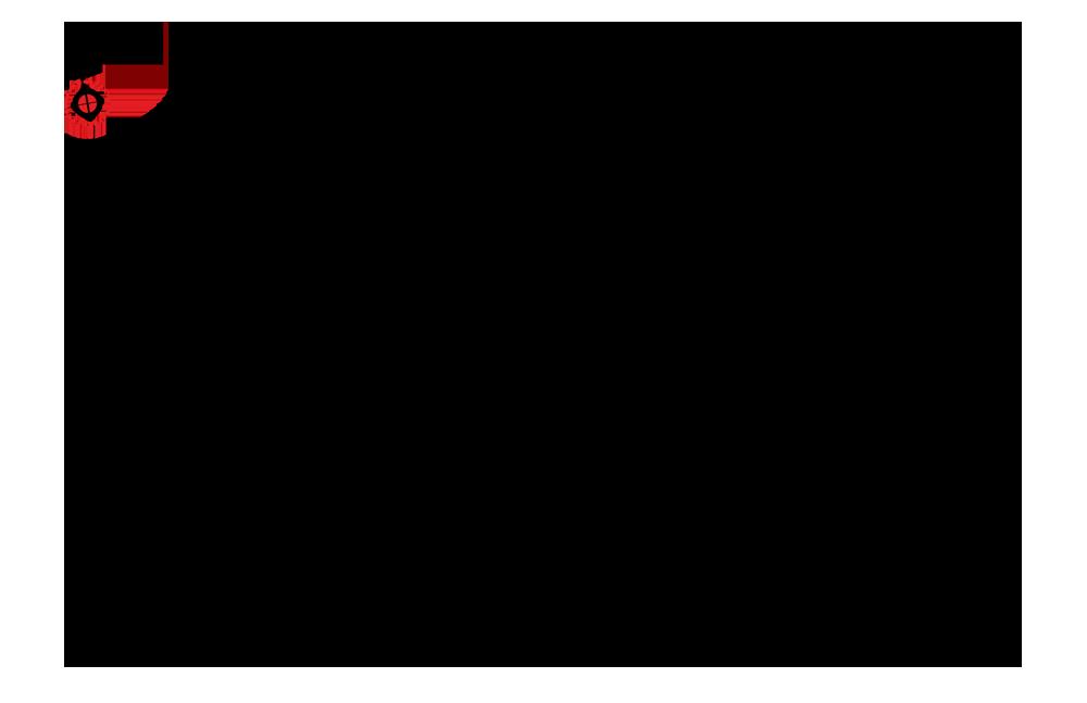 rzut pietra